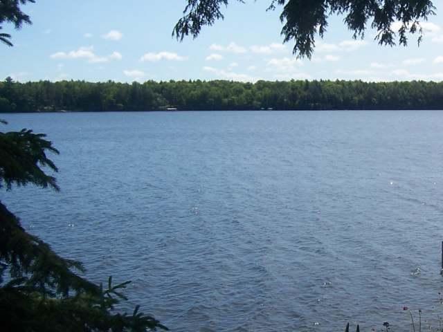 ON Duck Lake Rd W, Watersmeet, MI 49969