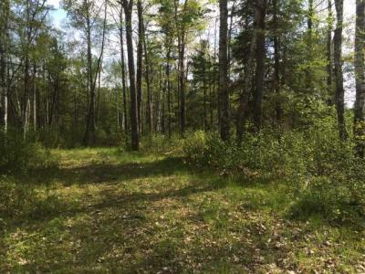 Photo of ON Hunter Lake Rd W, Conover, WI 54519