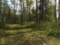 ON Hunter Lake Rd W, Conover, WI 54519