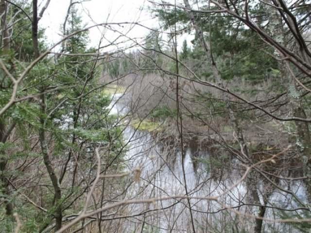 Lot A Turtle Rapids Ln, Mercer, WI 54547