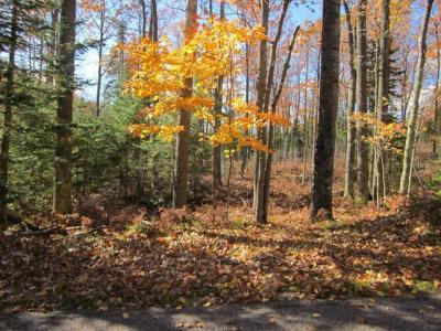Photo of ON Mcpeak Rd #Lot 2, Conover, WI 54519