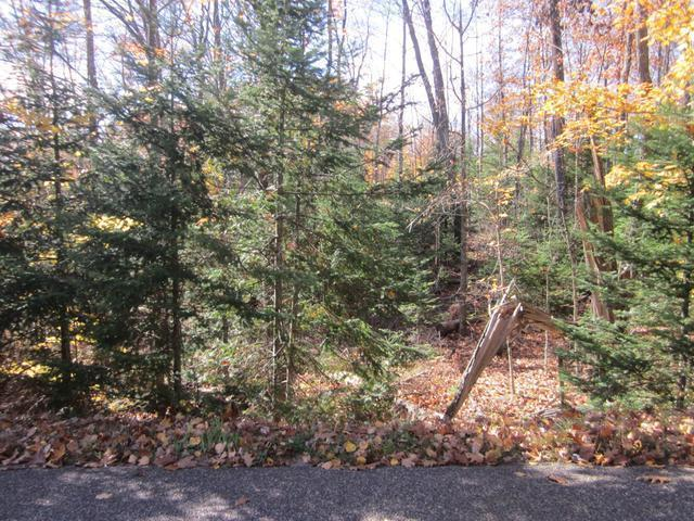 ON Mcpeak Rd #Lot 3, Conover, WI 54519