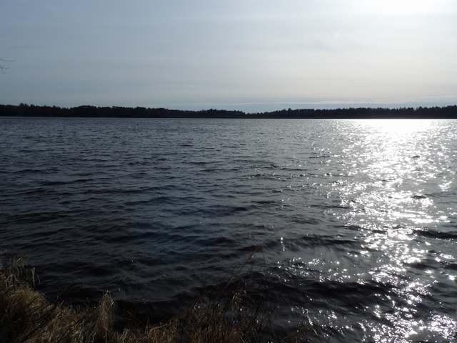 ON Breezy Pine Rd, Rhinelander, WI 54501