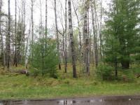 lot 8 Trailwood Dr, Minocqua, WI 54548