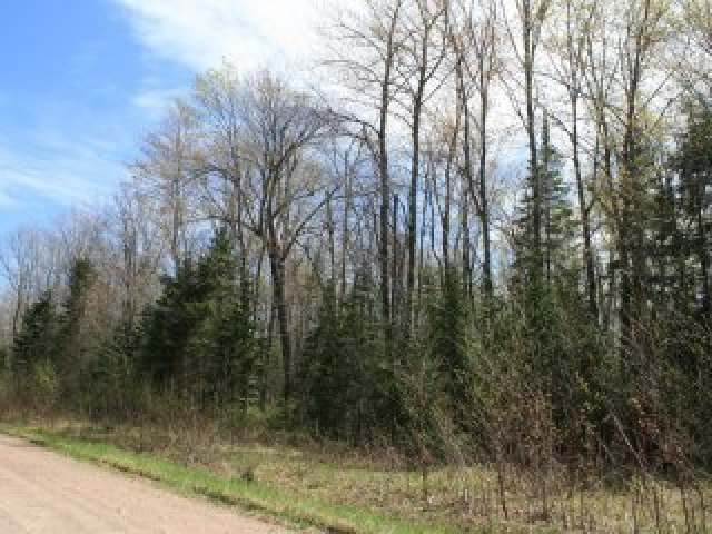 NEAR Central Ave E, Brantwood, WI 54513