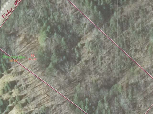 ON Timber Wolf Rd, Presque Isle, WI 54557