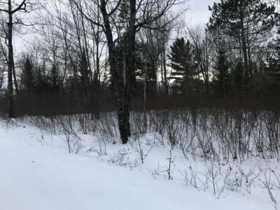 Photo of NEAR North Country Ln, Conover, WI 54519