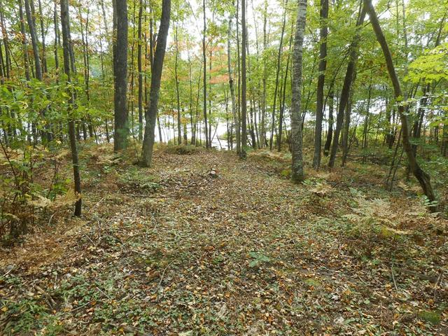 ON Green Bass Cr #Lot 11, Eagle River, WI 54521