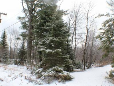 Photo of ON Mckinley Blv, Eagle River, WI 54521