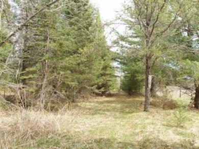 ON Old Cty E, Park Falls, WI 54552