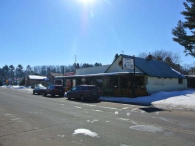 7251 Bradley St, Lake Tomahawk, WI 54539