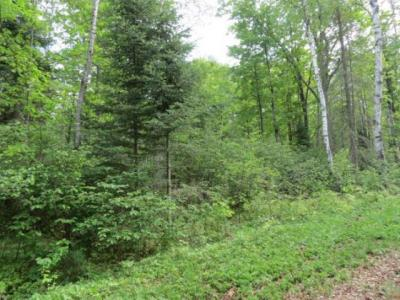 Photo of Lot 14 Bear Lake Rd, Boulder Junction, WI 54512