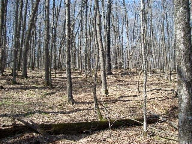 Lot 14 Red Fox Rd, Presque Isle, WI 54557