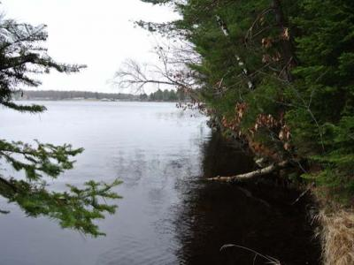 Photo of ON Bonkowski Rd, Three Lakes, WI 54562