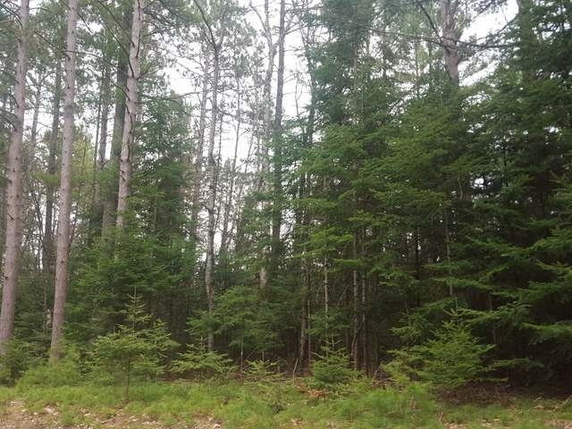 Lot 11 Maplewood Dr, St Germain, WI 54558
