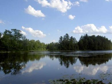 Lake Lot Birch Point Rd #Sawyer Lk, White Lake, WI 54491