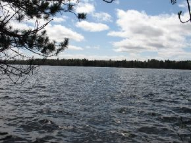 ON Trout Rd, Lake Tomahawk, WI 54539