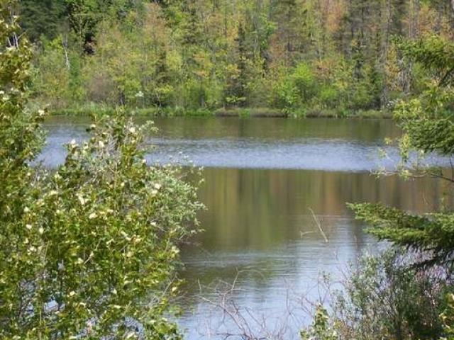 Lake Lot S Lake Ave, Crandon, WI 54520