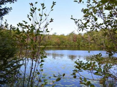 Photo of Lot 27 Trails End Rd, Winchester, WI 54557