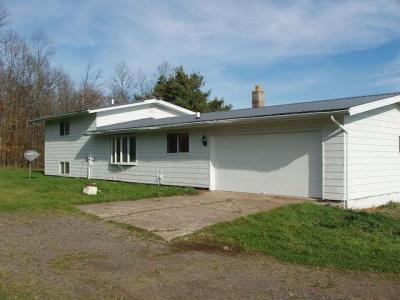 Photo of 11055 Lakeview Dr, Butternut, WI 54514