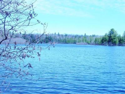 Photo of Lot 10 Rock Lake Rd W, Winchester, WI 54557