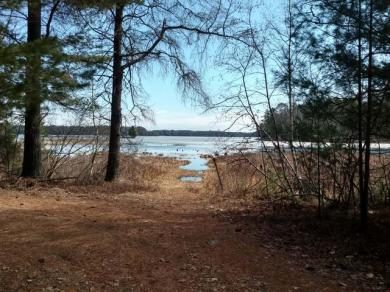 ON Braeger Rd, Three Lakes, WI 54562