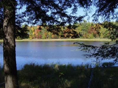 Photo of ON Black Bear Ln #Lot 5, Phelps, WI 54554