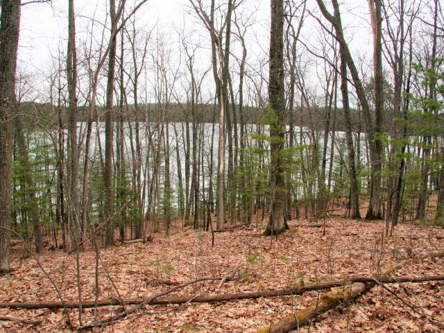ON Fallen Leaf Ln, Eagle River, WI 54521
