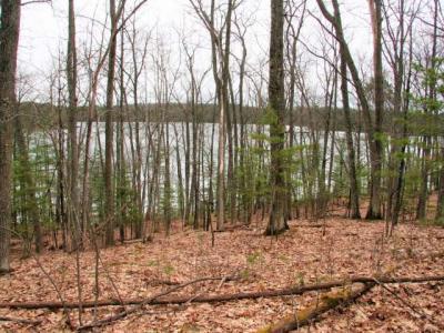 Photo of ON Fallen Leaf Ln, Eagle River, WI 54521