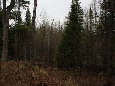 Photo of ON Hwy 17, Phelps, WI 54554