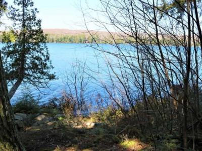 4611 Lake Lucerne Dr, Crandon, WI 54520