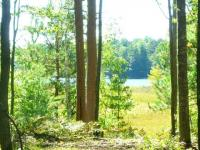 8563 Kenwood Terrace #5, Minocqua, WI 54548