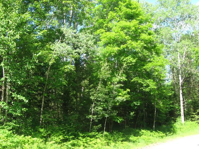 15 Black Forest Rd, Presque Isle, WI 54557