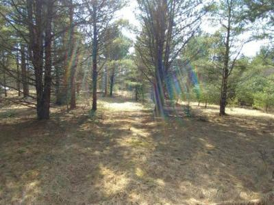 Photo of ON Ross Rd, Conover, WI 54519