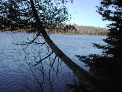 Photo of ON Little Papoose Rd, Winchester, WI 54557