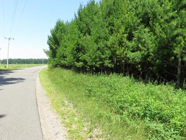 ON Oneil Rd #Lot 1, Three Lakes, WI 54562