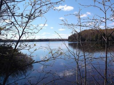 Photo of On Crab Crab Lake Rd, Presque Isle, WI 54557