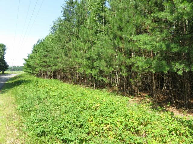 ON Oneil Rd #Lot 2, Three Lakes, WI 54562