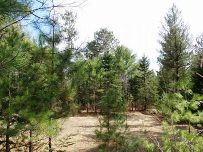 Photo of ON Larrabee Ln, Conover, WI 54519