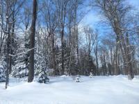 1050 Deer Path Rd, Phelps, WI 54554