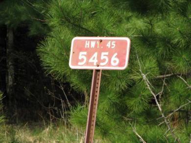 5456 Hwy 45, Three Lakes, WI 54562