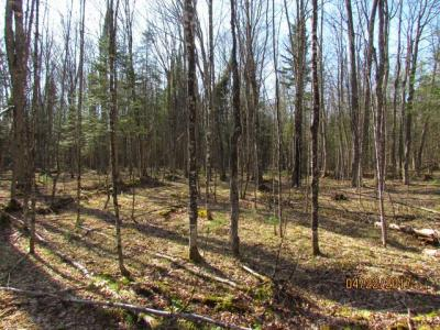 Photo of ON Church Rd, Conover, WI 54519