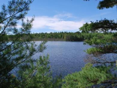 Pine Tree Dr, Minocqua, WI 54568