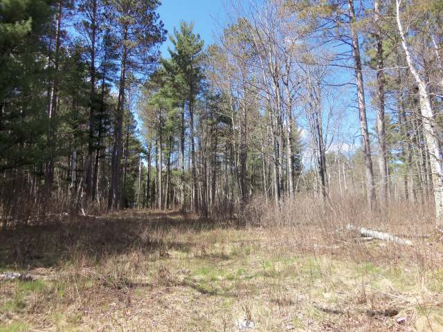 TBD Clear Lake Rd, Manitowish Waters, WI 54545