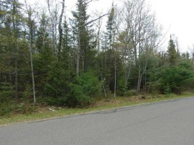 Photo of ON South Shore Rd, Phelps, WI 54554