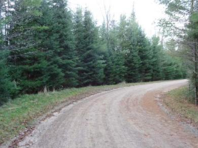 Lot 4 Maplewood Dr, St Germain, WI 54558