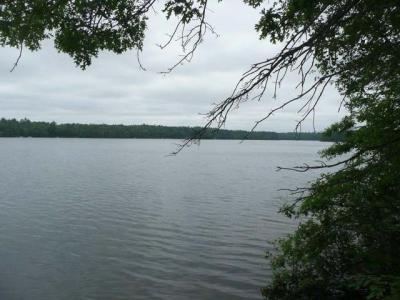 Photo of 6447 Goose Rd, Lake Tomahawk, WI 54539