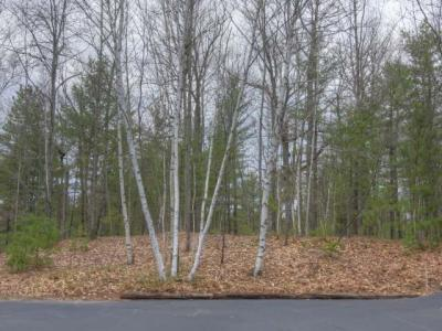 Photo of 1798 Wilderness Tr #Lot 4, Eagle River, WI 54521