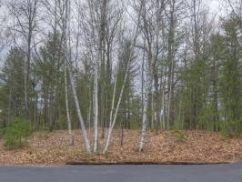 1798 Wilderness Tr #Lot 4, Eagle River, WI 54521
