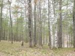 1798 Wilderness Tr #Lot 4, Eagle River, WI 54521 photo 4